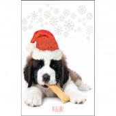 BIGLIETTO AUGURALE NATALE 11,7x17 ANIMALI KARTOS